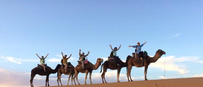 Travel Marketing Strategy